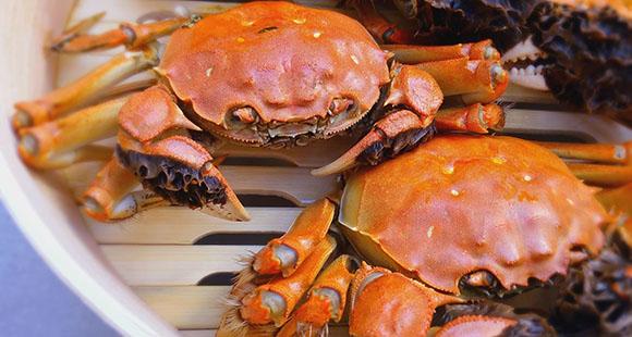 男子吃大闸蟹突发肾衰竭 这些吃蟹禁忌你得清楚!