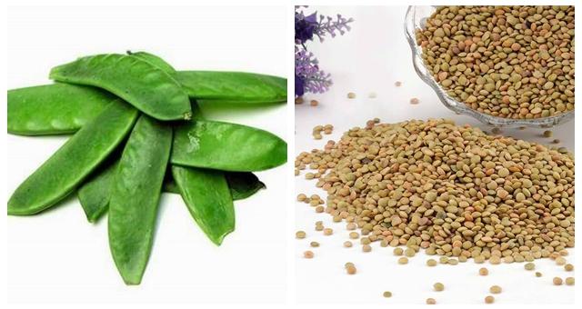 小扁豆有助控血糖 常吃有益健康