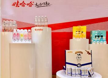 娃哈哈锌多多,钙多多营养酸奶饮品图片
