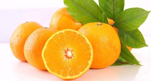 贪吃柑橘水果?可能会招来这4个麻烦