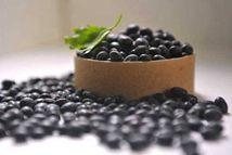"""黑豆可为血管""""减龄"""""""