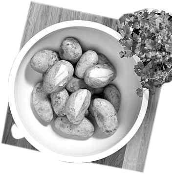 土豆未来的粮食